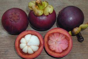 Mangoustan bio superfruit antioxydant puissant