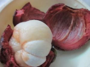 Mangoustan superfruit antioxydant naturel puissant