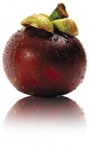 le mangustan bio antioxydant naturel puissant
