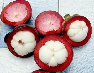 Le mangoustan bio , un antioxydant naturel puissant